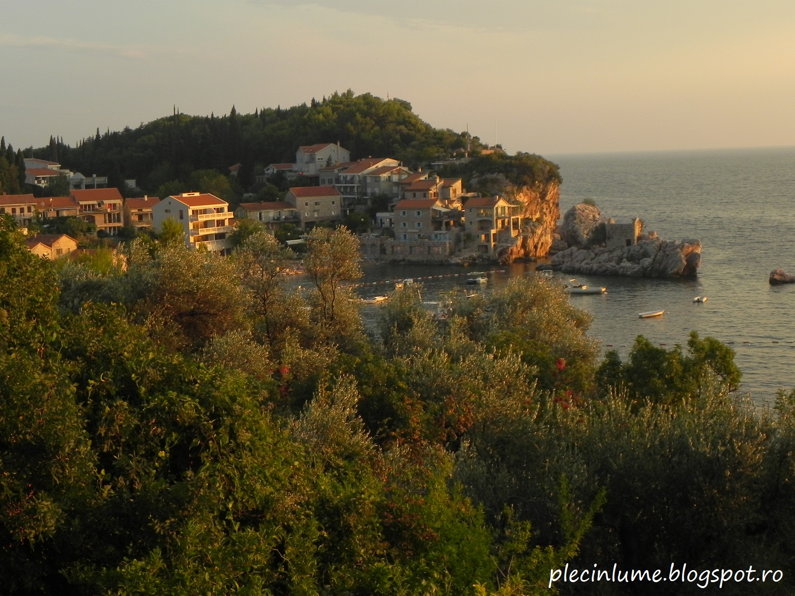 informatii despre Muntenegru