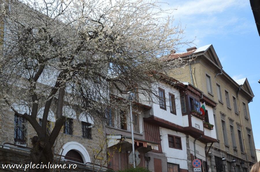 Veliko Tarnovo o zi