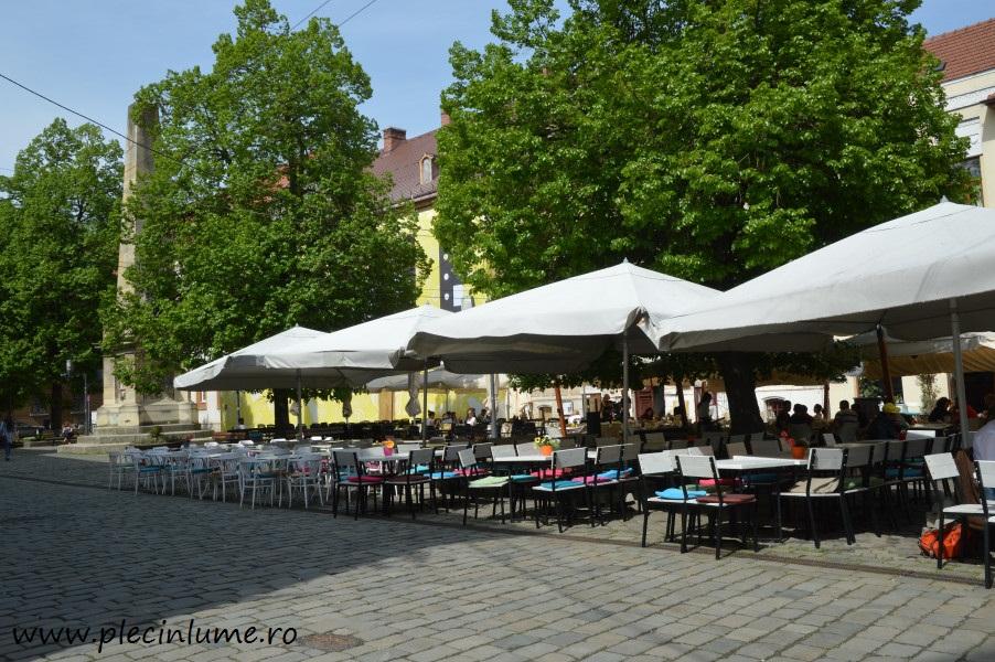 Piata Muzeului din Cluj
