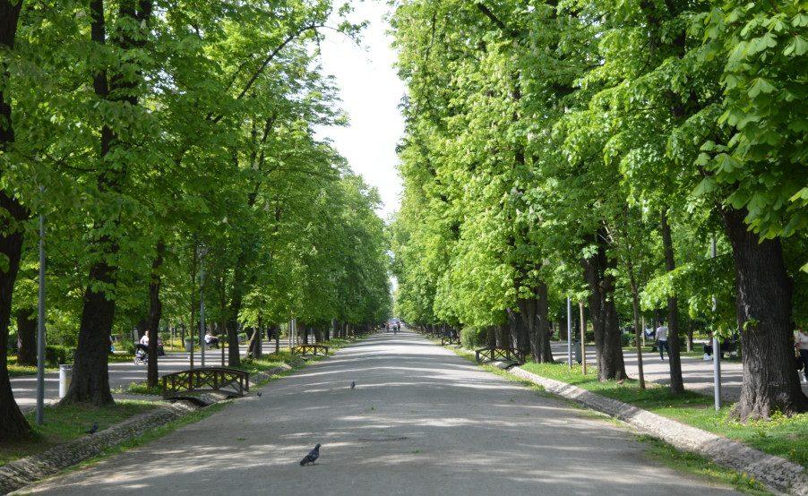 Parcul central din Cluj