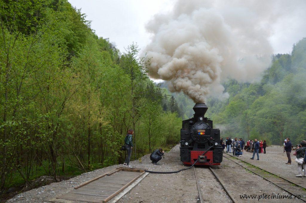 Tren cu aburi in Maramures
