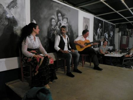 Spectacol de flamenco in Sevilia