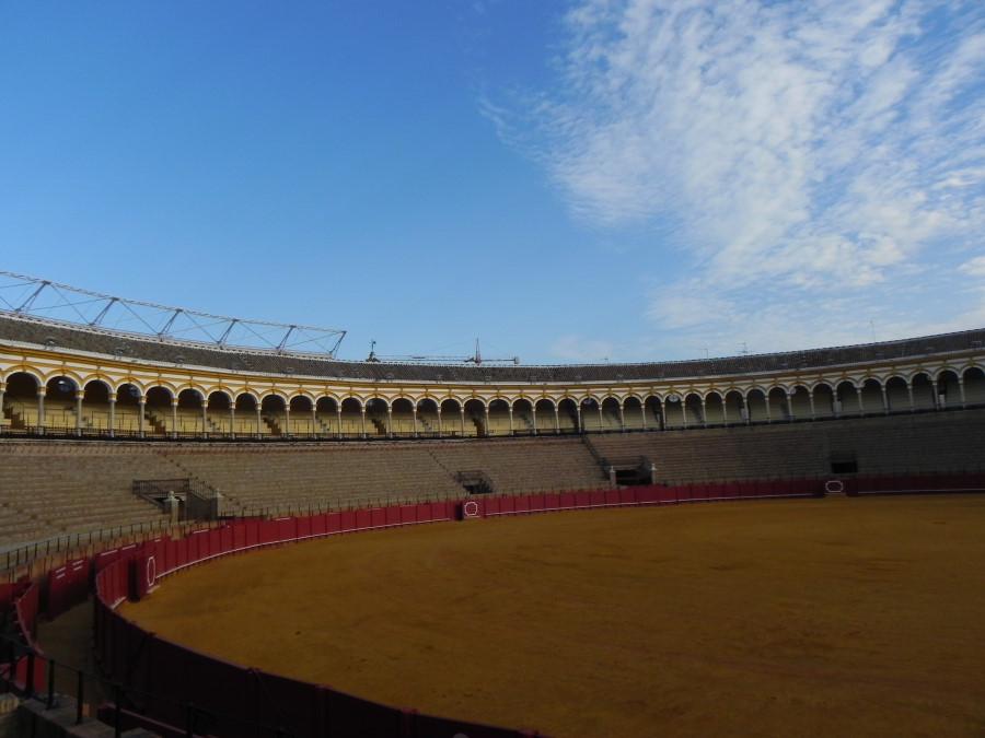 Coride in Sevilia - Plaza de los Toros