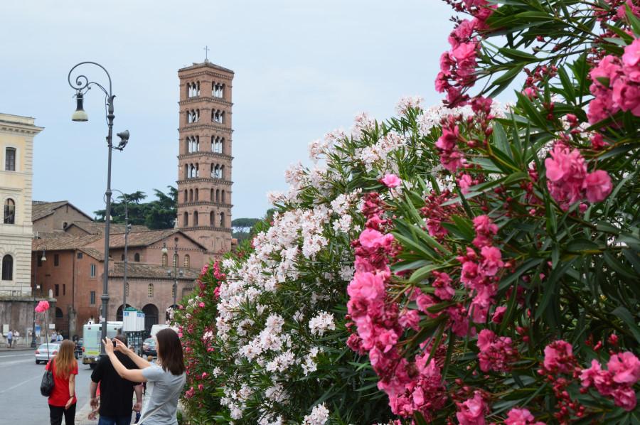 Cele mai impresionante biserici in Roma