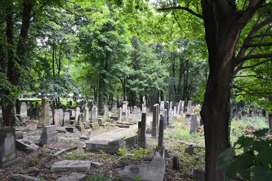Cimitirul evreiesc Cracovia