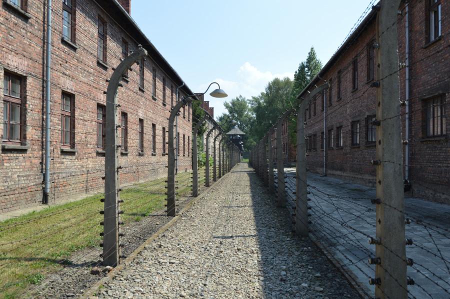 Vizita la Auschwitz