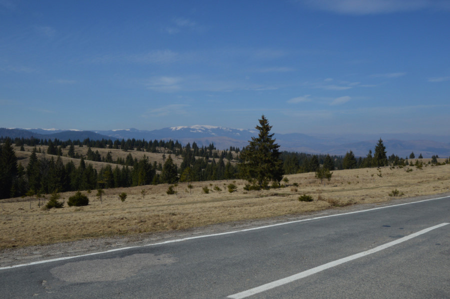 Drum Albac Belis