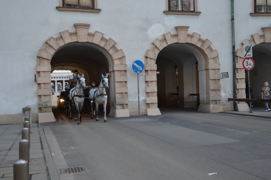 Trasura in Viena